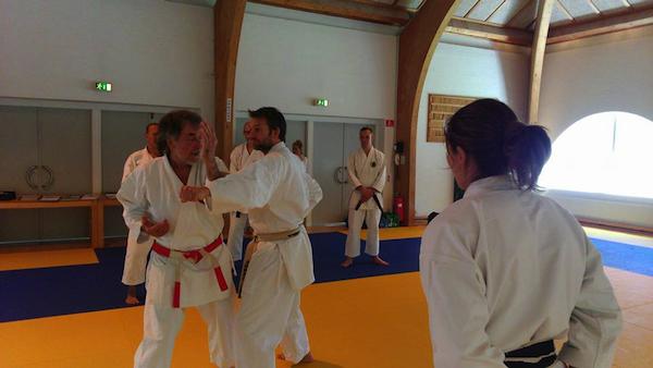 Okinawan Shuri-ryu Karate Sommerlejr på Bosei 2015