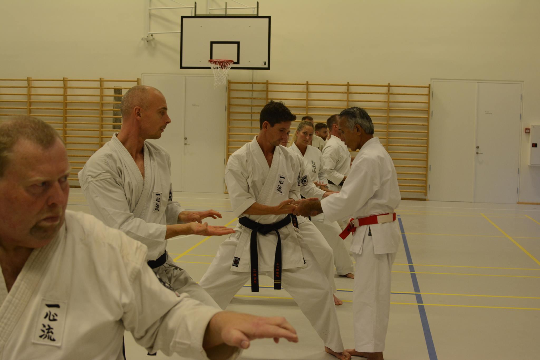 Uechi Sensei in Denmark
