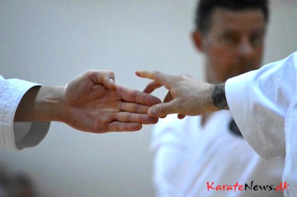 Kata weekend i Hørsholm Karate Klub