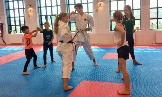 Skoleelever sveder og får nye venner på karatesommerskole