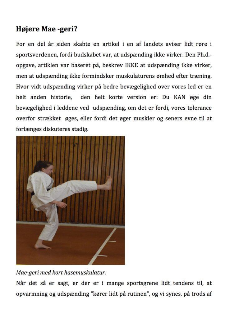 artikel-karatenews-1