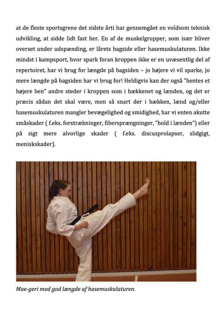 artikel-karatenews2