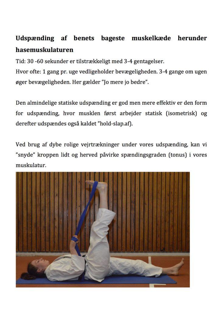 artikel-karatenews5
