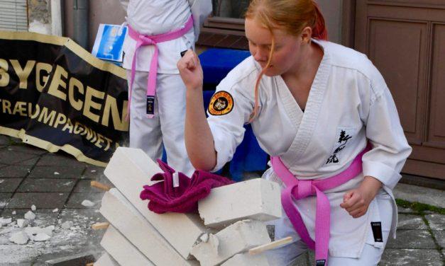 Pink Karate – Shingoryu
