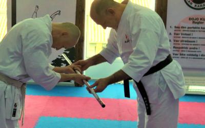 Karatedo med fokus