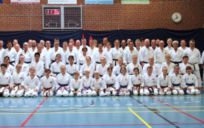 Shotogakusha Pinselejr 2018 i Horsens
