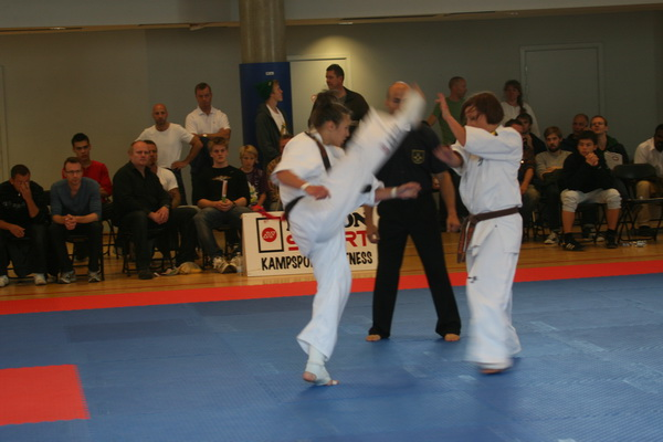 Danish Open i knock down 2011 i Dansk Karate Union