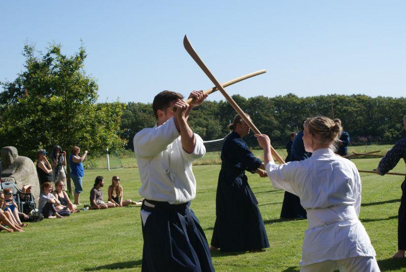 Japansk sværdfægtning: 5. – 11. juli 2014