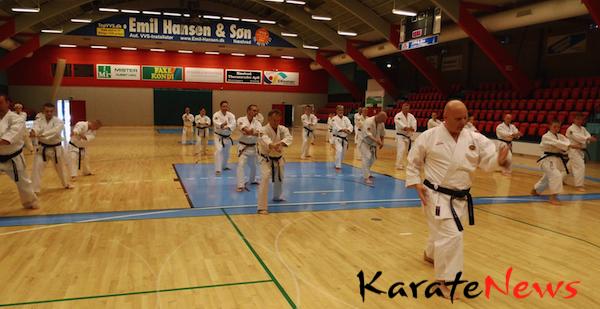 Karatetræning på  tværs af Øresund