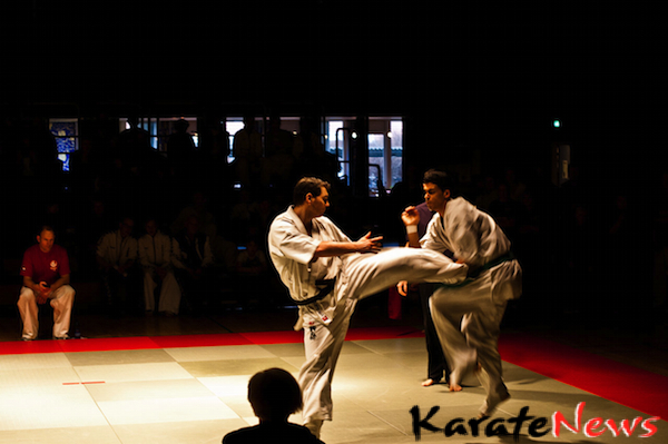 Fyn Open / DM 2012 Dansk Karate Union