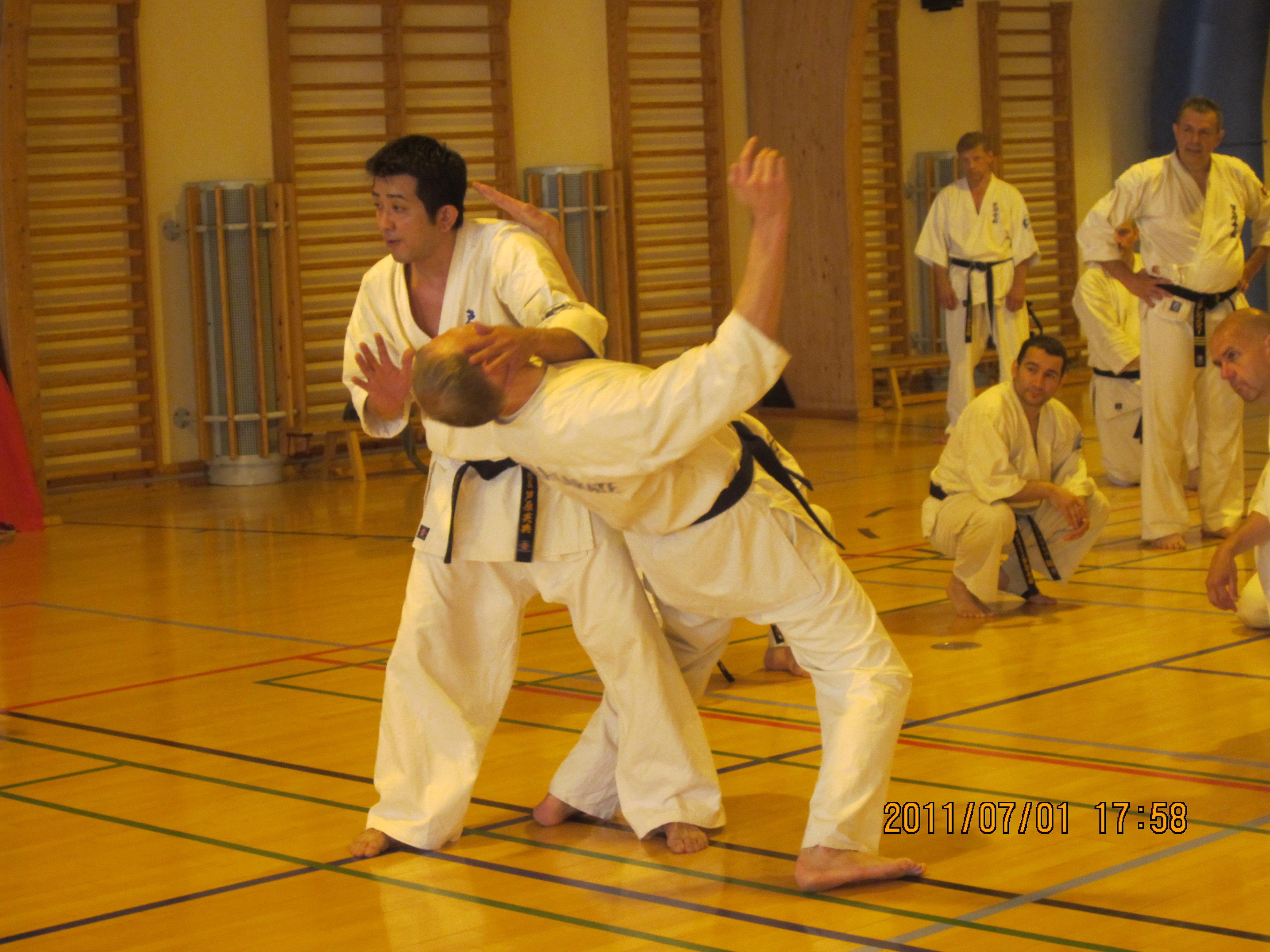 Ashihara Karate Sommerlejr på Bosei Idrætshøjskole
