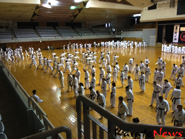 World Budo Sai IOGKF Okinawa Goju-ryu Camp