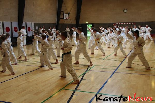 Shin-Go-Ryu sommerlejr i Hørsholm