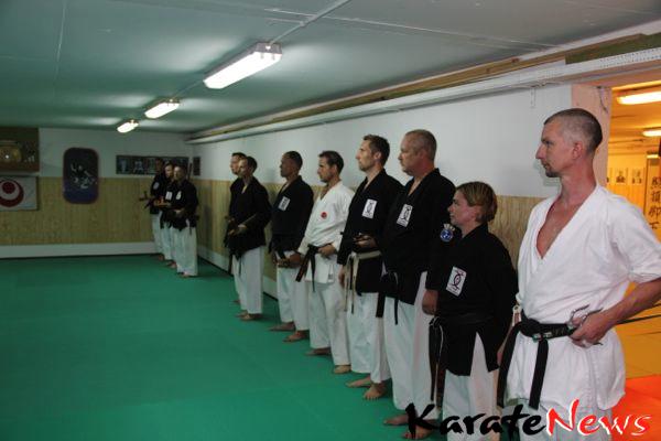 Kobudo træning i København