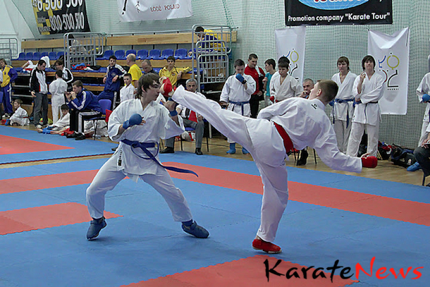 8th HARASUTO WORLD CUP CENTRAL EUROPEAN KARATE LEAGUE