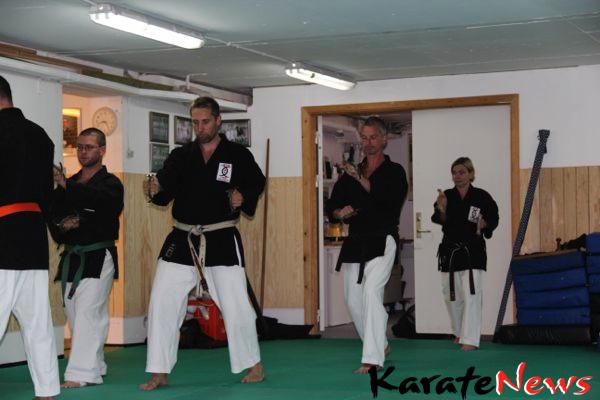 Kobudo instruktør træning i København