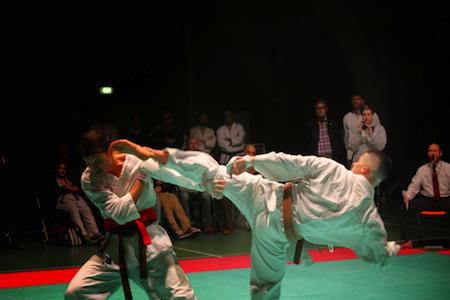 Shotokan-Cup 2014