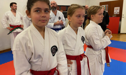 Trænings- og udviklingsstævne i Shobu Ippon Danmark