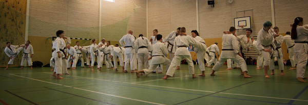 Karate shotokan-7895-imp