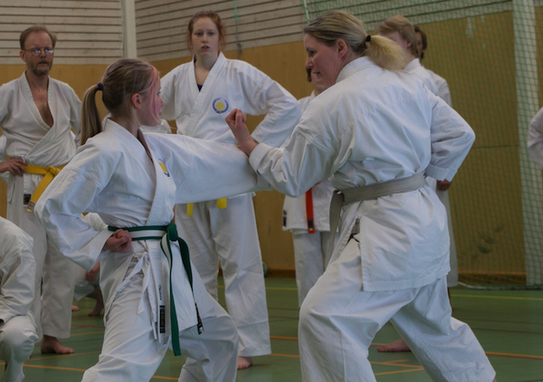 Karate shotokan-7996-imp