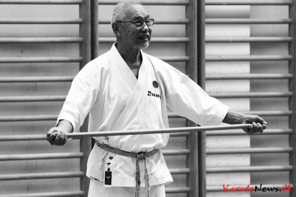 JKA Shotokan Gasshuku Slovenia 2014 with Masahiko Tanaka sensei