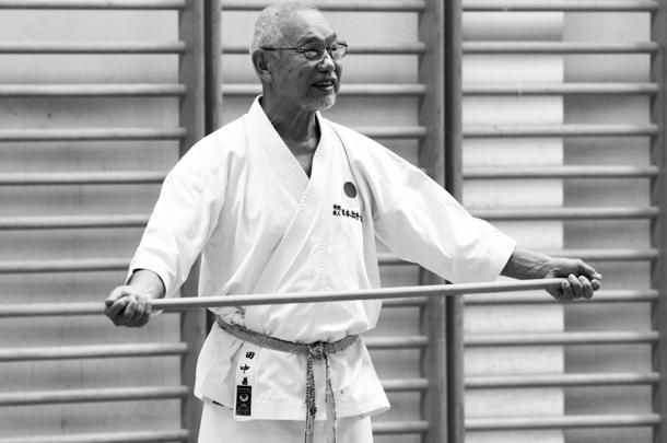 JKA Shotokan Gasshuku Slovenien 2014 med Masahiko Tanaka sensei