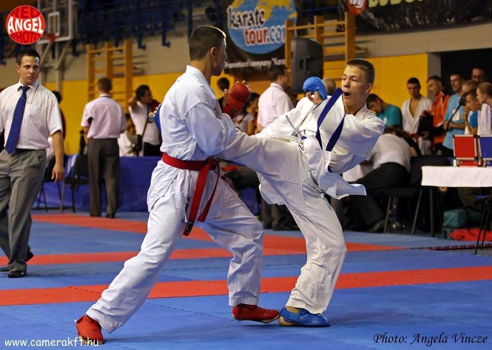 WKF Karate, 15th Budapest Open 2012, Ungarn
