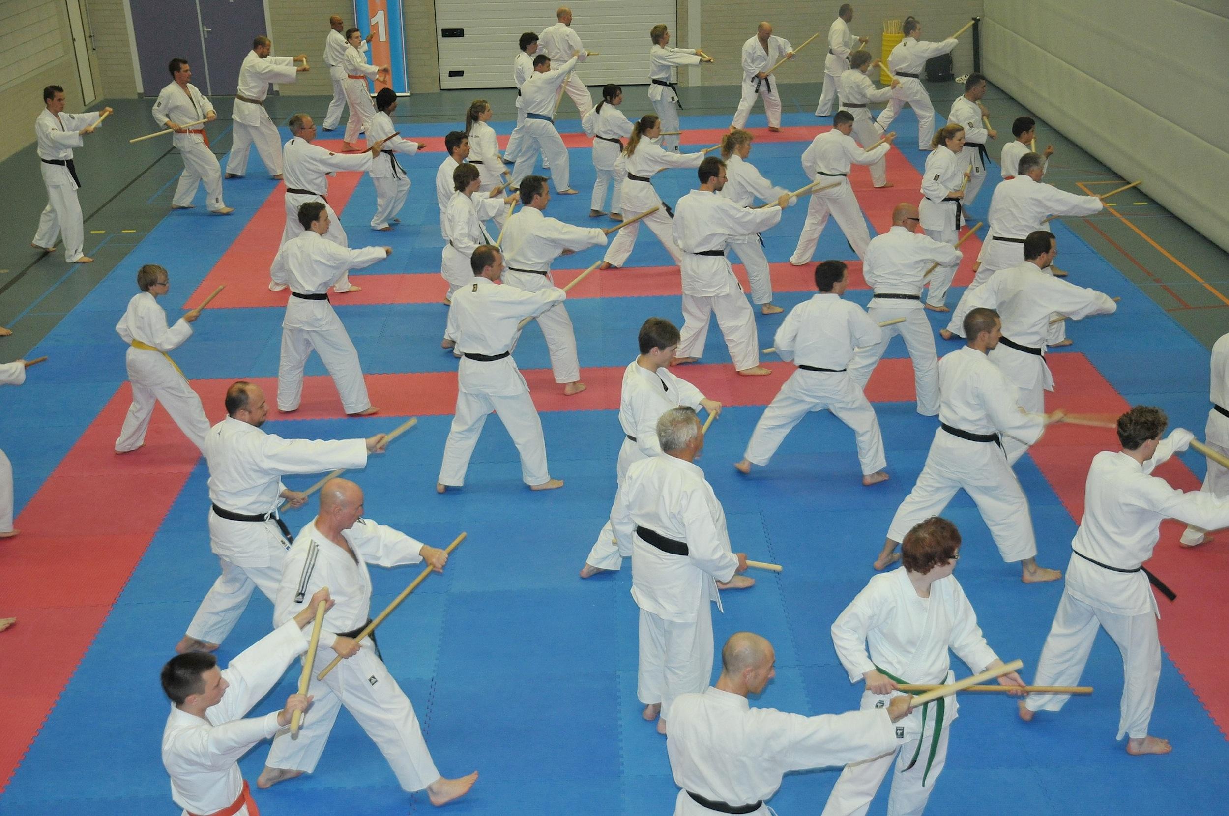 """""""Dag van het Karate"""" eller """"Karatens Dag"""""""