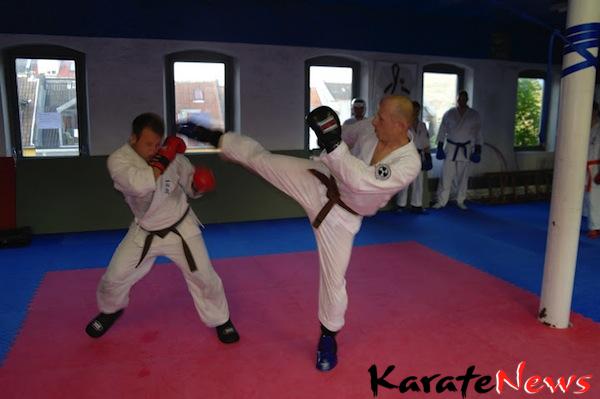 Fælletræning og  1. kyu graduering i Joshinkan Dojo Århus