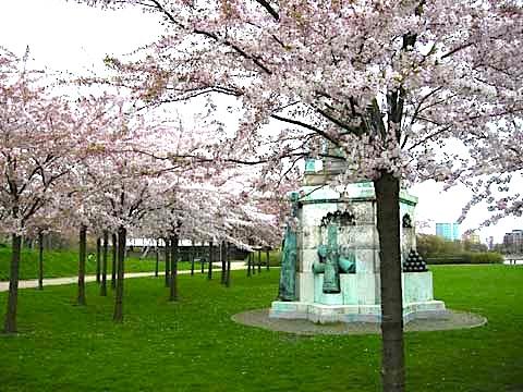 Sakura festival i København 26. og 27. april 2014