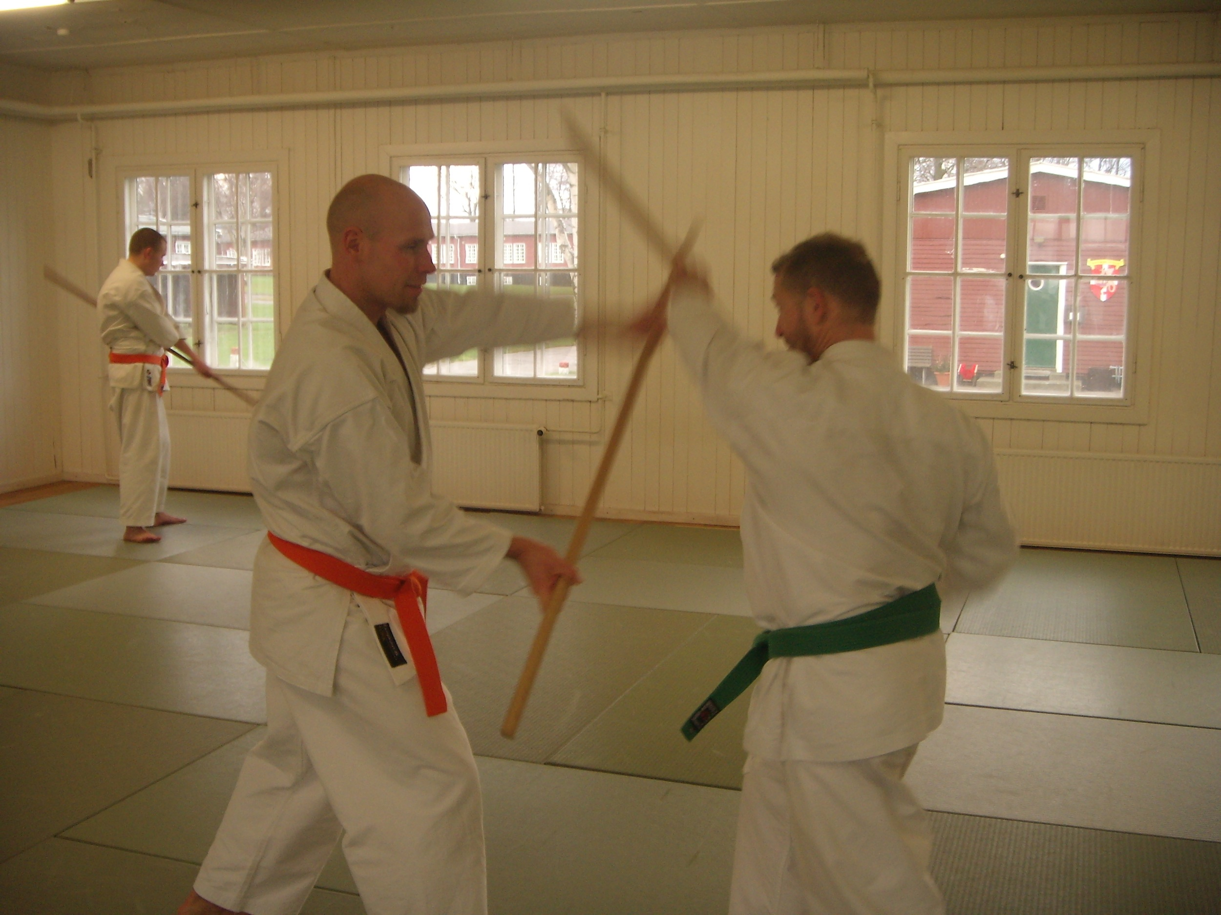 Jushinryu Ju Jitsu og Kobudo seminar på Bornholm
