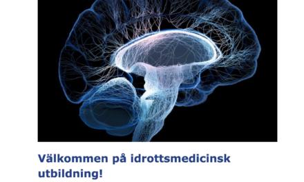 Det svenske karateforbund sætter fokus på hjernerystelser