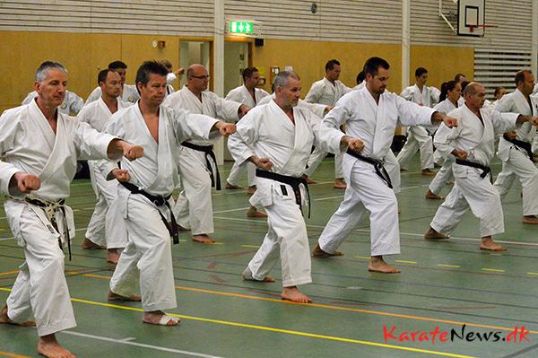 Yamaguchi-sensei stockholm october 2014_1 180-imp