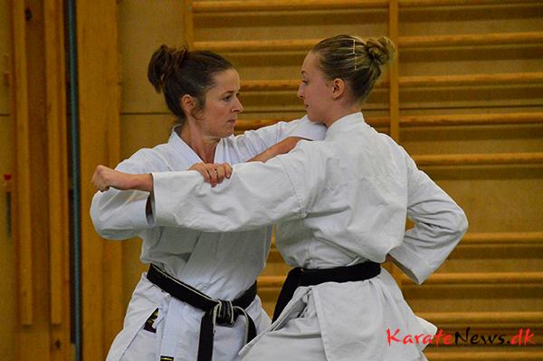 En weekend i det svenske med Yamaguchi-sensei