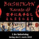 Bushikan 1 års fødselsdag