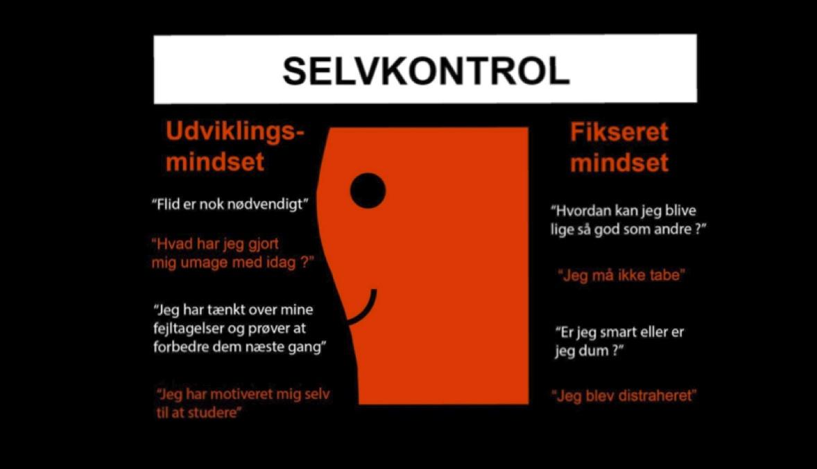 Selvkontrol og Karate