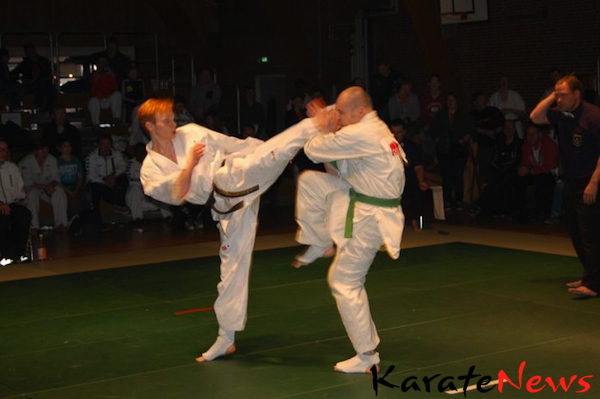 DM i Knock-Down Karate samt Fyn Open i Semikontakt 2013