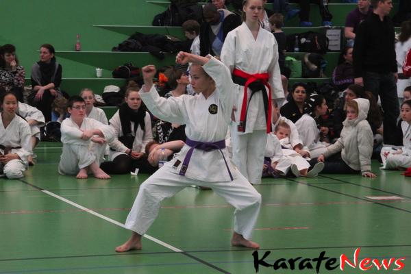 Kodomo og Kadet Cup 2012 og Grand Champion Cup Junior og Senior 2012