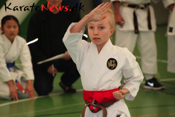 Dansk Traditionel Karate Forbund har afholdt deres årlige Kodomo – Kadet  –  Grand Champion stævne, lørdag den 1. marts 2014.