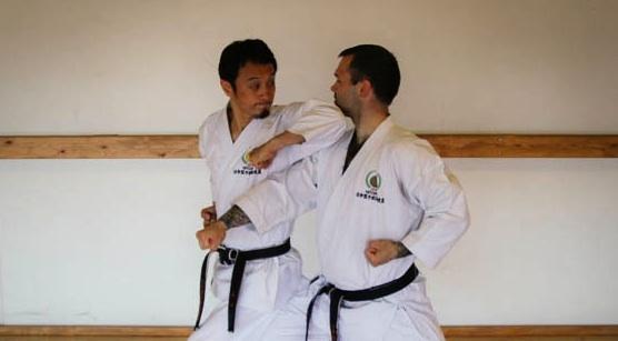 Teknikserie, sensei Yamaguchi, 7. dan JKS Shotokan