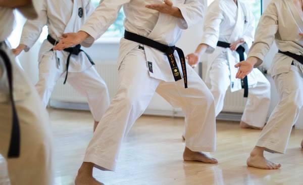Shobu Ippon Danmark træningssamling
