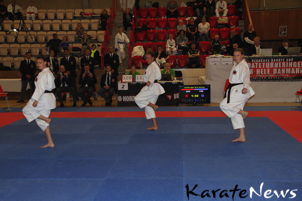 gladsaxe_cup_2013_IMG_3806_resize-imp