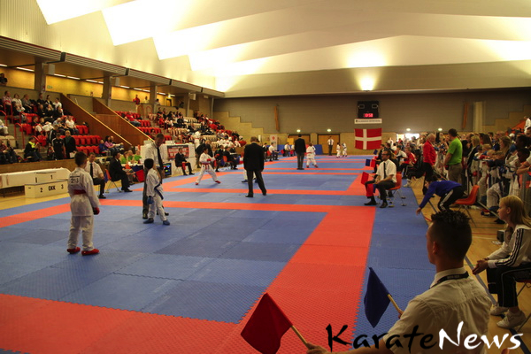 gladsaxe_cup_2013_IMG_3901_resize-imp