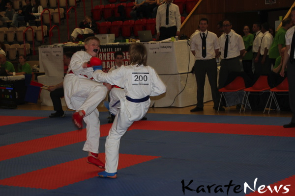 gladsaxe_cup_2013_IMG_4054_resize-imp