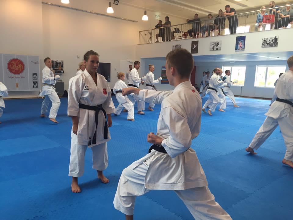 Landsholdsudtagelse i United Karate of Denmark