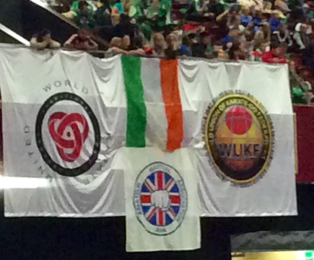 World Karate Championships in Ireland