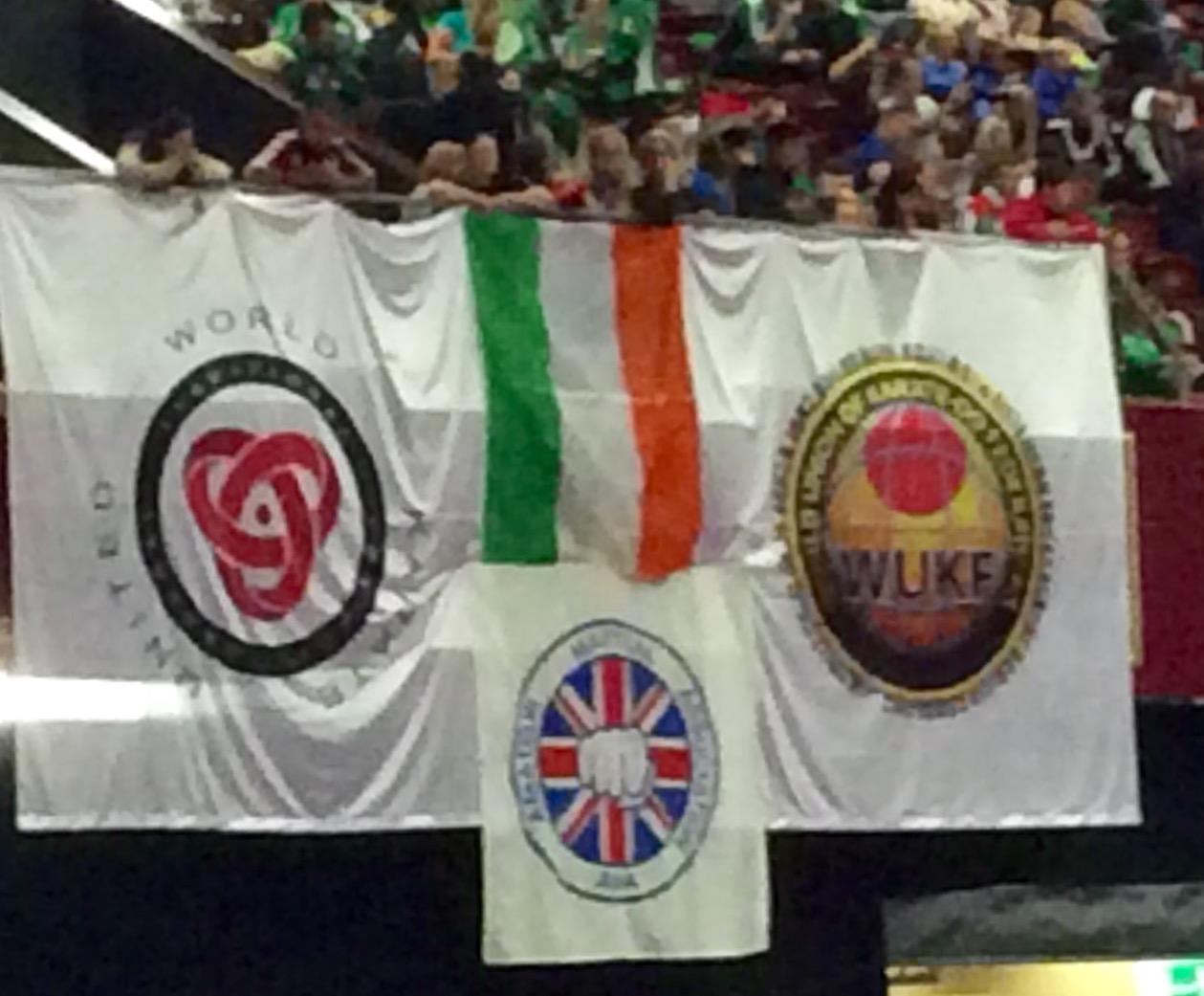 World Karate Championships in Ireland