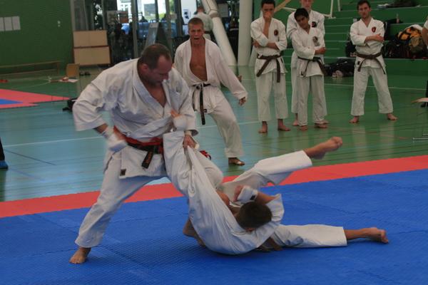 De danske mesterskaber i Dansk Traditionel Karate Forbund.