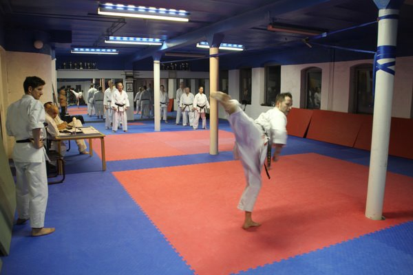 Træningslejr i Isshinryu Karate & Kobudo