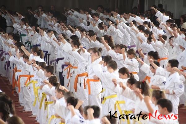 Okinawa Isshinryu Karate seminar i Rumænien